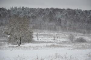 дачные участки в жилом посёлке Шараповское