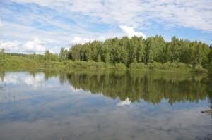 дачный поселок у воды